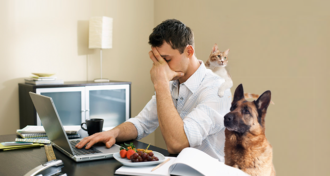 Ups and Downs of Working From Home